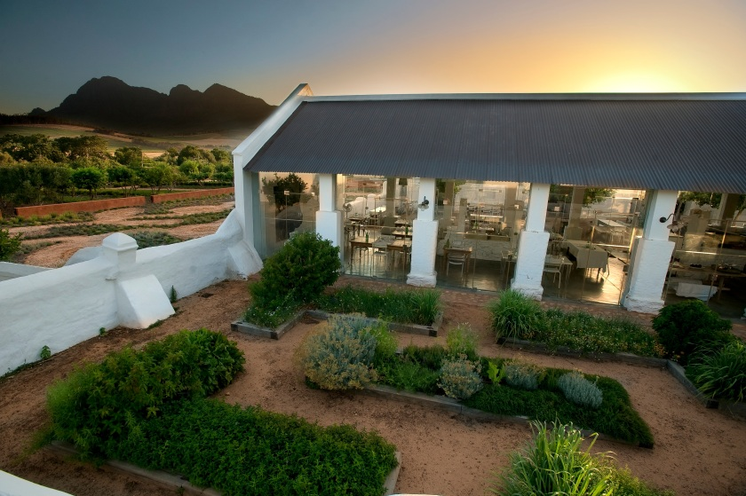 Ferme BabylonStoren-Babel at sunset, Simonsberg as backdrop - copie.jpg